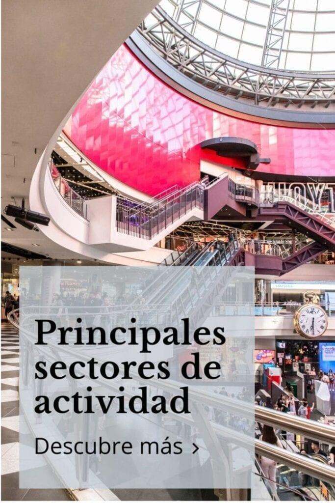 Principales sectores de actividad 1 scaled 1 683x1024 - Tormo Franquicias | Consultora de Franquicias